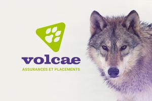 volcae-1170x780