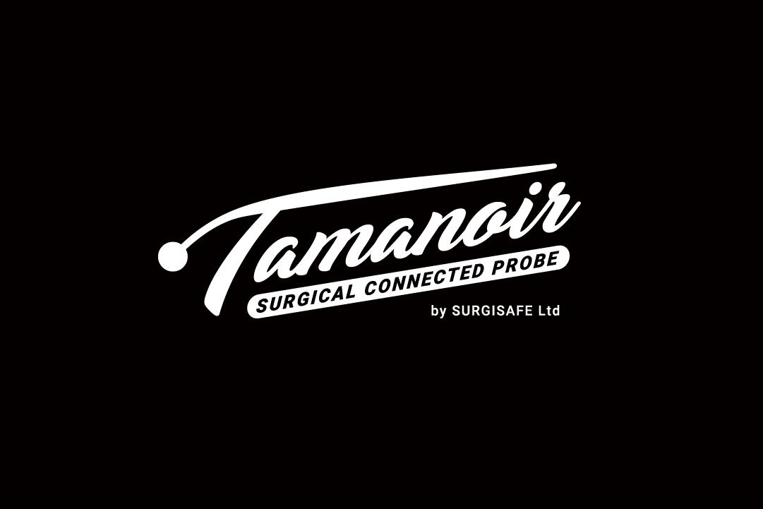 Tamanoir