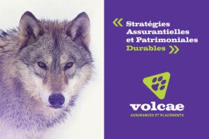 volcae_2