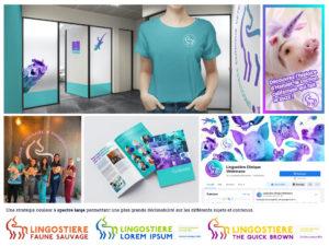 Univers de marque de la Clinique Vétérinaire Lingostière (extrait) - Crédit BrandSilver